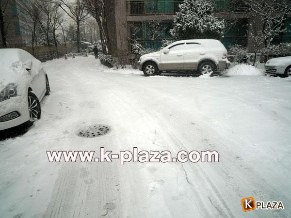雪のソウルの写真2