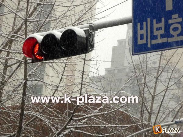 雪のソウルの写真