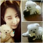 少女時代ソヒョン、愛犬とのキュートな2ショット写真を公開