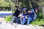 「花よりおじいさん」、大人気メンバーたちのギリシャ旅行写真を公開!