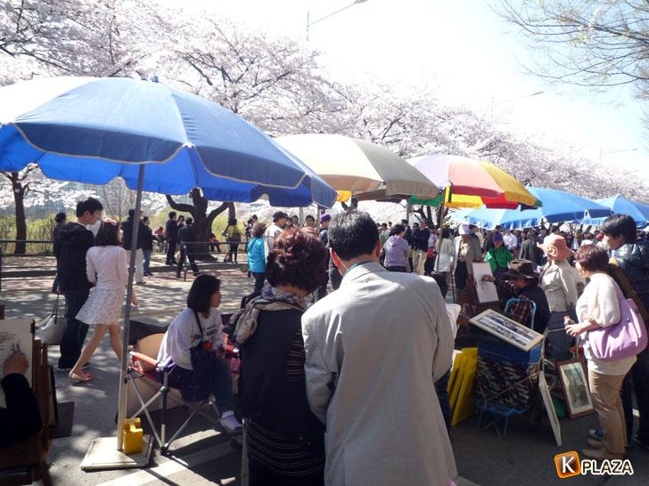 汝矣島-春の花祭りイベント