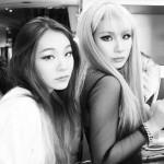 2NE1のCL、妹イ・チェリンと仲良しショットを公開!