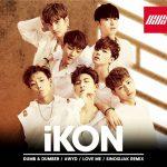 iKON(アイコン)、豪華4曲入り!初の日本オリジナルシングル「DUMB & DUMBER」9月28日(水)に発売へ