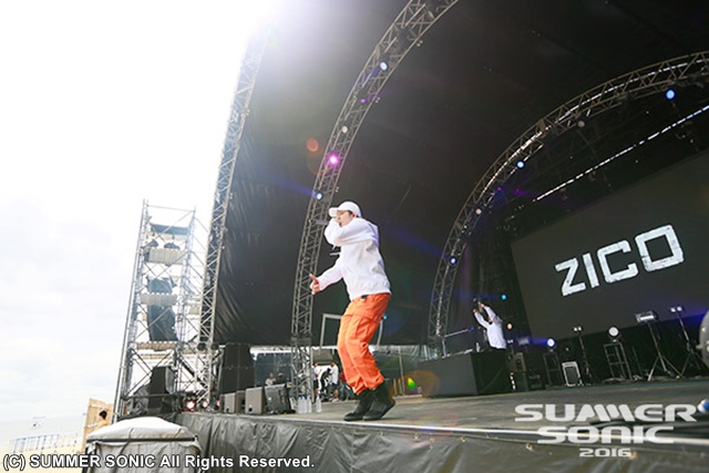ZICO-S1