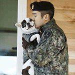 SUPER JUNIORシウォン家族の愛犬に噛まれた有名韓国料理店代表死亡、シウォンと父が謝罪