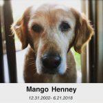 ダニエル・ヘニーの愛犬のマンゴー、今月21日に天国へ…「私に抱かれて安らかにこの世を去りました」