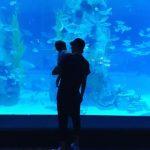 """チョ・ユンヒが公開した""""娘LOVE""""イ・ドンゴンの姿が話題!「家族で水族館におでかけ…」"""