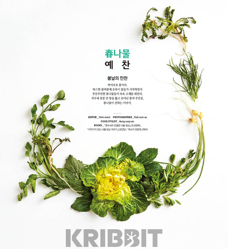 KRIBBIT 韓国雑誌