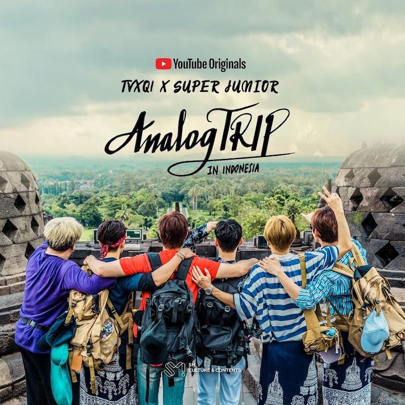Analog TRIP