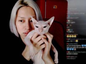 ヒチョルとソルリさんの猫