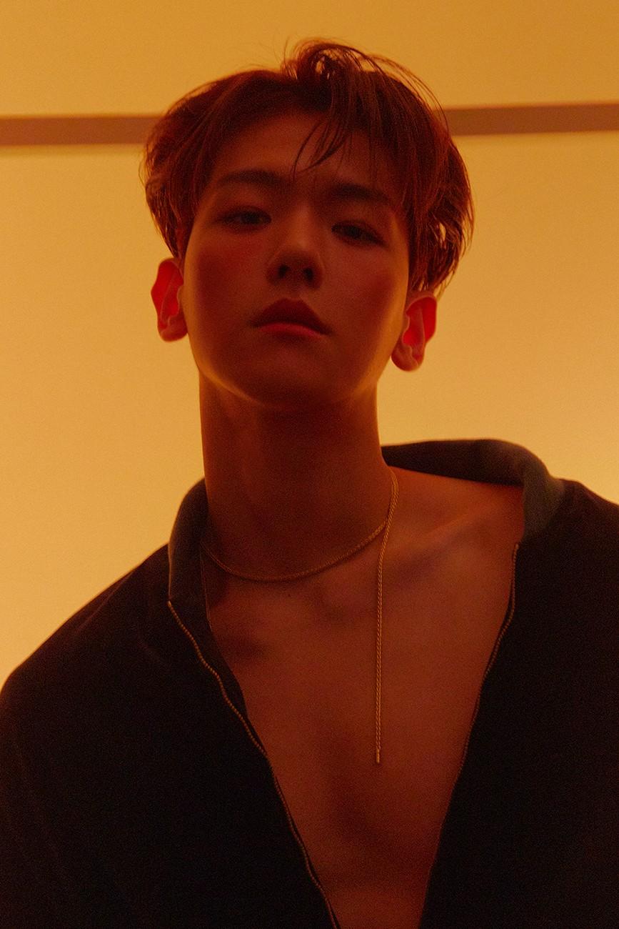 EXO ベクヒョン「Delight」