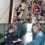 元EXOのクリス(ウー・イーファン)の拘置所写真が流出?「ここまで地に落ちるとは・・・」の声も